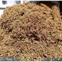 Продам тютюн берлі, від 10 кілограм