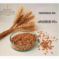 Реалізуємо насіння пшениці ярої РАННЯ-93