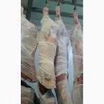 Продам говядину в полутушах, возможен Халяль на экспорт высочайшего качества