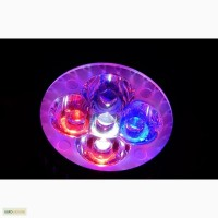 Фитолампа светодиодная 10W (полный спектр-red, white, blue) LED