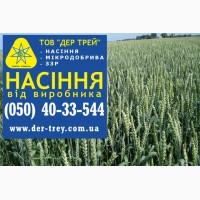 Семена озимой пшеницы Грация, урожай 2017 года от компании Дер Трей