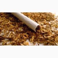 Элитный табак! продам табак идущий на експорт350 кило