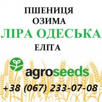 Пшеница озимая Лира элита от производителя - Agrotrade / Agroseeds