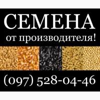 Если семена, - то только от производителя! Агротрейд - семена ярового ячменя