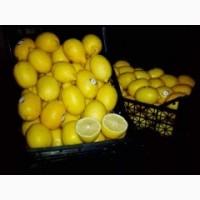 Продам лимоны в хорошем качестве