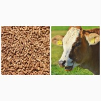Комбикорм для крс, коров, телят