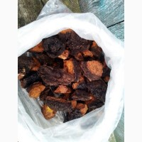 Продам (гриб) Чагу березову, сушену чи свіжу