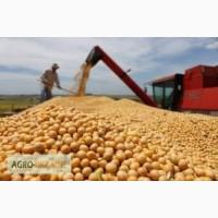Куплю пшеницу по всей Украине.Постоянная основа.Ф1.100% предоплата