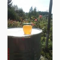 Продам чисто липовый мед