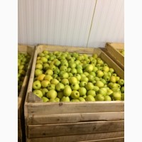 Продажа оптом в больших количествах яблок