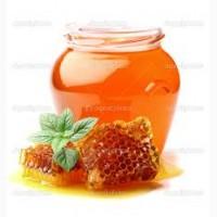 Мед оптом дорого, без антибиотика