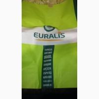 Семена подсолнечника Евралис (EURALIS)