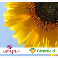 Посевной материал –гибриды подсолнечника под Евролайтинг – технология Clearfield
