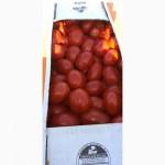 Продам помидор, сорт 3402