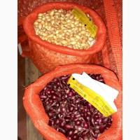 Продам Лук севок озимый Ред Барон, Broer, Голландия, 10 кг