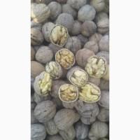 Продам грецкий орех урожай 2019