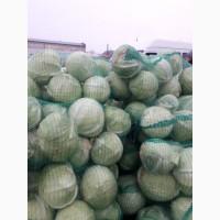 Продам капусту белокачанную обьём есть