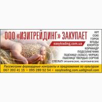 Закупаем пшеницу 2 3 4 класс