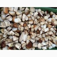Продам морожені білі гриби(цілі, кубик) та мариновані білі грибочки( великі партії)