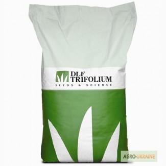Семена газонных трав газон насіння газону DLF Trifolium