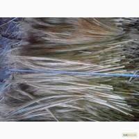 Продам сырье сорго для вязания и производства веник