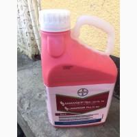 Ламардор Про - ефективний протруйник для зернових