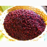 Продам сушеную горную бруснику(Закарпатье)