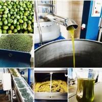 Оливковое масло Турция