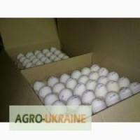 Продам яйця куриние оптом c0 c1 c 2 працюемо с доставкою