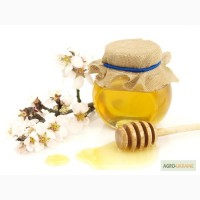 Экспорт мёда из Украины оптом