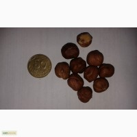 Фундук 13-15, 15, сырой и жаренный