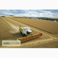 На уборку зерновых культур требуются КОМБАЙНЫ