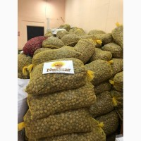 NutStar Export Company (Walnut ). 5.9$/kg