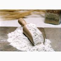 Житнє борошно (мука) цільнозернове (від 1 кг.)