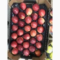Продажа яблок оптом для магазинов и рынков. Большое количество сортов