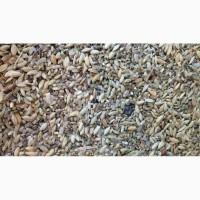 Куплю некондицию пшеницы