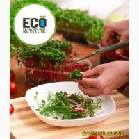 Продам микрозелень срезанную оптом