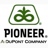 Рапс Пионер PR45D05 MAXIMUS посевной материал