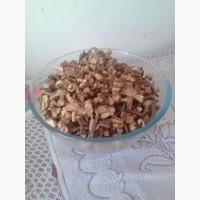Продам сушенный корень лопуха (репейника)