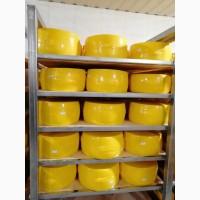Продам сир Російський на експорт