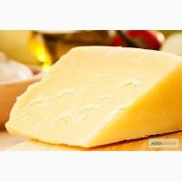 Сыр гауда в Одессе по приятным ценам. Домашний козий сыр гауда