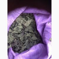 Продам сухой лист крапивы