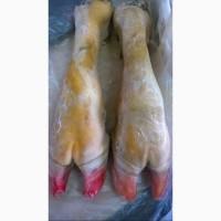 Ноги говяжьи ( Beef feet)