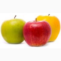 Купим яблоко