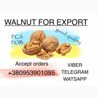 We accept orders for walnuts