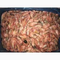 Креветки 95-125. Креветки вареные замороженные Канада