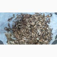 Продам сухі білі грибочки