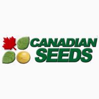 Насіння сої з Канади та США