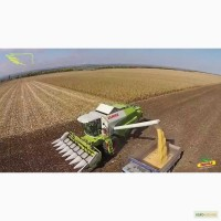 Услуги уборки урожая кукурузы, аренда комбайнов CLAAS LEXION 480, CLAAS MEGA 208