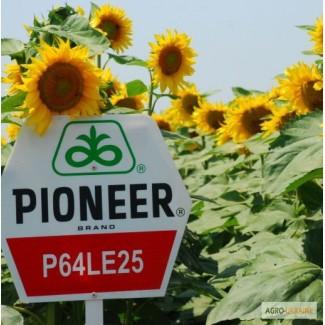 Компания Агро-семенс реализует по доступным ценам семена подсолнуха и кукурузы